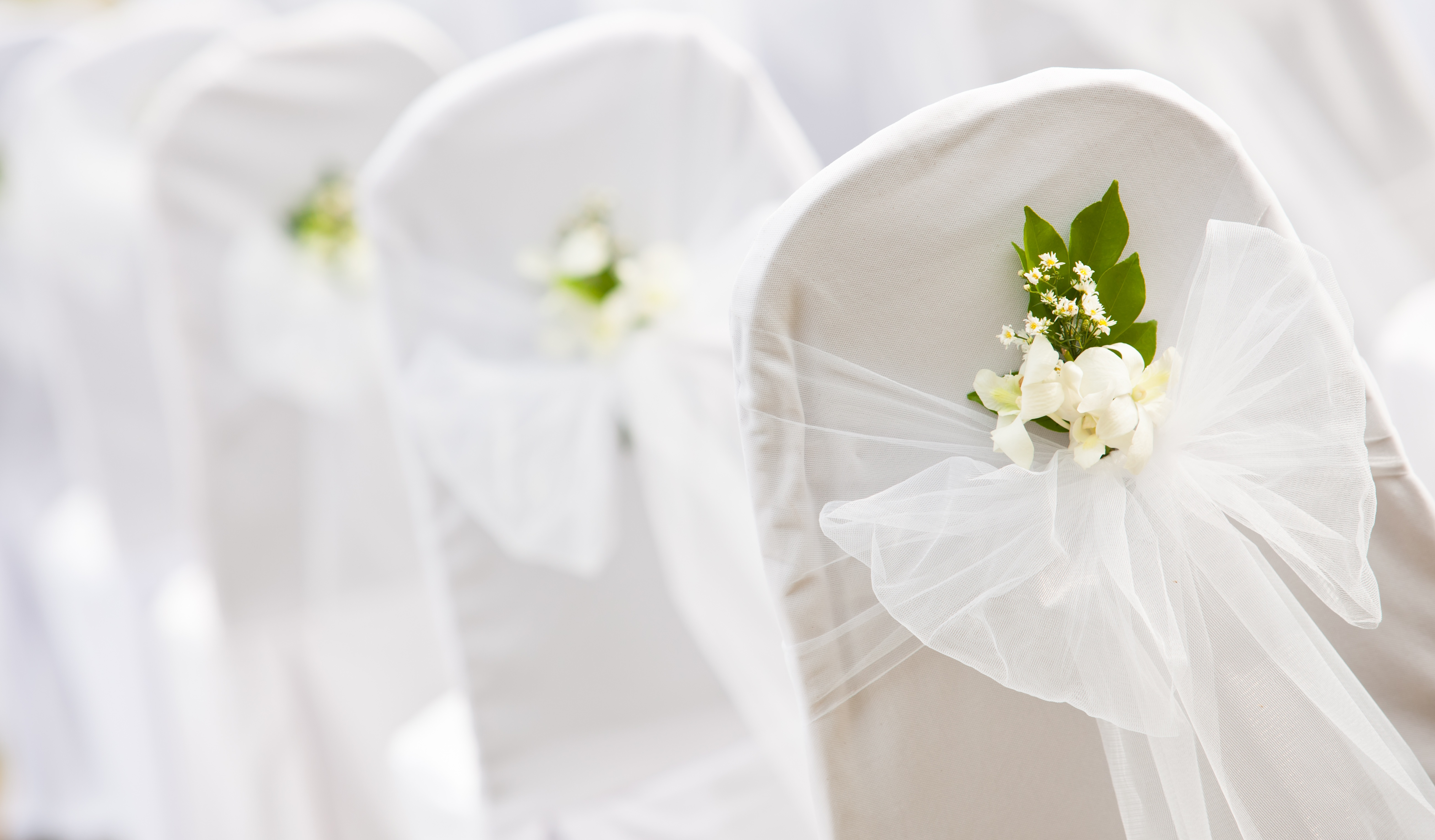 White Organza Sash with Greenery on Cotton Chair Cover  - Sophia's Final Touch - Venue Styling - Weddings & Event Decoration