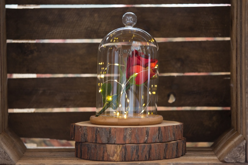 Beauty & the Beast Bell Jar  - Sophia's Final Touch - Venue Styling - Weddings & Event Decoration